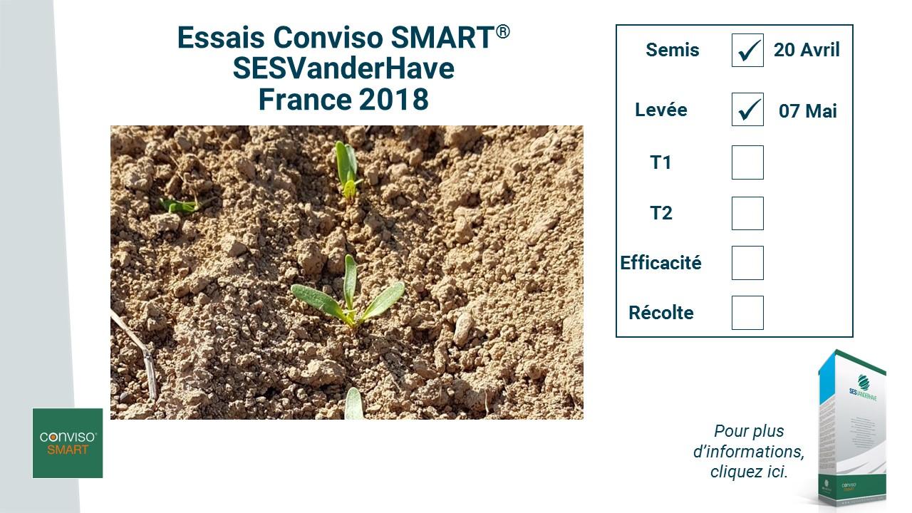 Campagne RS_Levée 2018